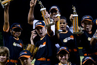 Baseball: Stewards of the Game Championship 2010